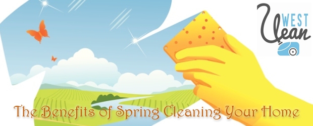 Spring Cleaning