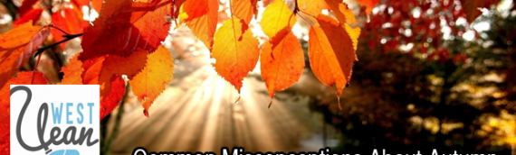 Common Misconceptions About Autumn