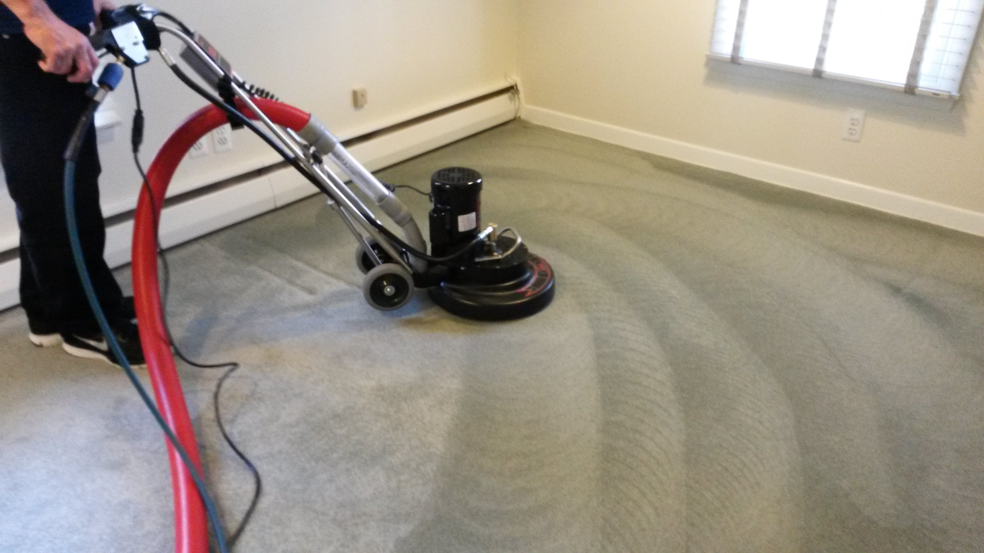Carpet Cleaning West London Carpet Cleaners In West London